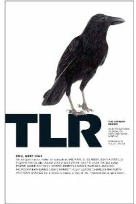 The Literary review USA